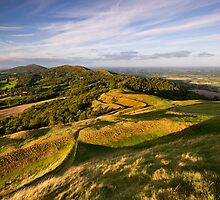 The Malvern Hills : British Camp by Angie Latham