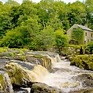 Cenarth Mill by Anthony Hedger Photography