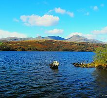 Coniston Water in the Sun by trish725