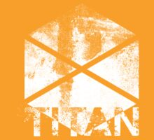 Destiny Titan grunge by Greven