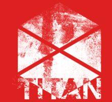 Destiny Titan grunge Kids Clothes