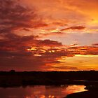 Kakadu Wetlands Sunset 4 by Jaxybelle