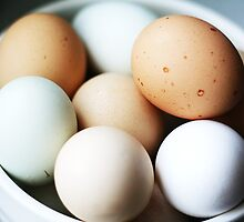 [eggs]- fresh, all natural farm eggs from local farm in China by homemadeinchina