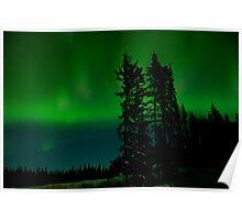 An Aurora Curtain of Green Poster
