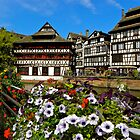 Strasbourg in bloom by mamba