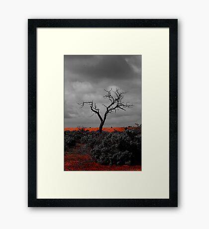 A myall away  Framed Print