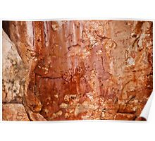 West Arnhem Land  -   Rock Art Poster