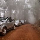 CONVOY IN THE MIST - Limpopo Province South Africa by Magriet Meintjes