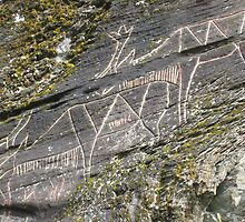 Helleristninger - Hell's Rock Carvings by ellismorleyphto