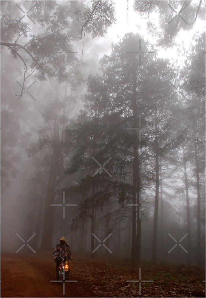 THE MIST, THE BICYCLE MAN AND THE LANTERN by Magriet Meintjes