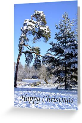 Winter Walk - Christmas Card by Samantha Higgs