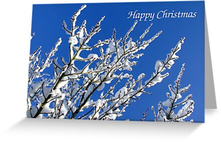 Snowy Branches - Christmas Card by Samantha Higgs