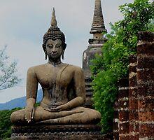 At Wat Mahathat by Indrani Ghose