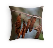 Hung Out To Dry Throw Pillow