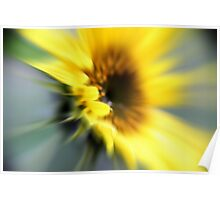 Sunflower rush Poster
