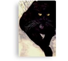 Black cat Max Canvas Print