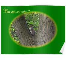 You are so cute !! Poster