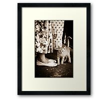 OnePhotoPerDay Series: 256 by L. Framed Print