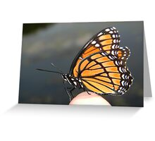 Monarch on my finger! Greeting Card
