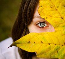 Fall eye by photodivaanna