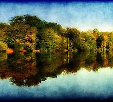 Reflections of Autumn ©  by Dawn M. Becker