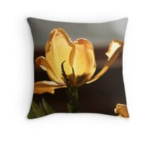 flower with warm colours Throw Pillow