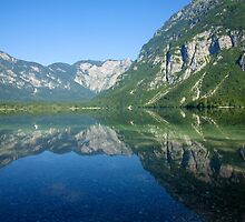 Summer alpine reflections by Ian Middleton