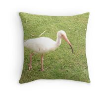 On the Hunt for Food Throw Pillow