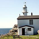Lobster Cove Head Lighthouse Rocky Harbor by Leslie van de Ligt