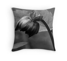 Contentment ! Throw Pillow