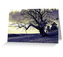 Black and white landscape Greeting Card