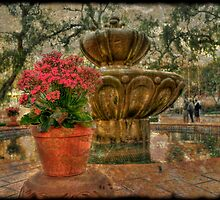 Spanish  Fountain by Frank Garciarubio