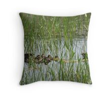 Whistling Ducks Stand Guard Throw Pillow