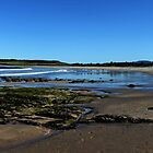 Shellharbour NSW by Evita