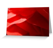 The Future's Bright, The Future's a Shade of Red.... Greeting Card