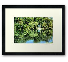 Willow on The River Framed Print
