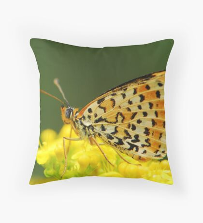 who wins the colour Throw Pillow