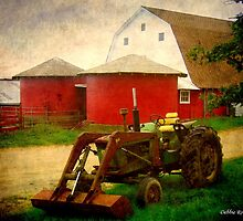Twins and a Tractor by Debbie Robbins