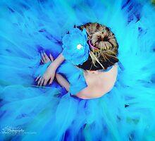 Blue Cinderella by Raquel Perryman