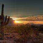 Glorious Sunrise  by Saija  Lehtonen