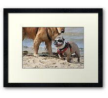 French Escape Framed Print