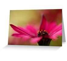 Pink and Dreamy Greeting Card