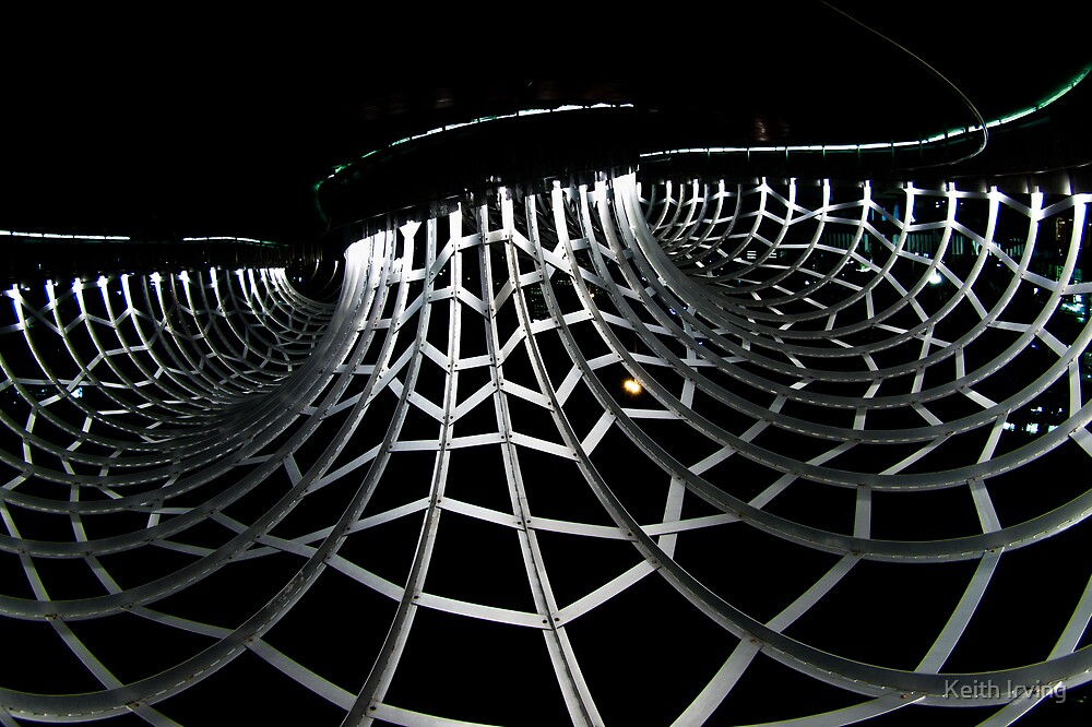Web Bridge, Inverted by Keith Irving