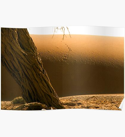 Sossusvlei Dune Formations - Namibia Poster