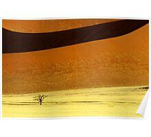 Sossusvlei Dune Formations - Namibia Poster