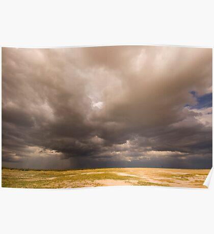 Rainfall in Etosha National Park, Namibia Poster
