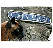 Cat's Close, Culross, Fife, Scotland, UK Poster