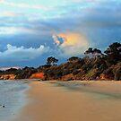 Jam Jerrup Western Port, Victoria by Aleksander