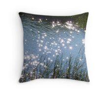 Estuary... Throw Pillow