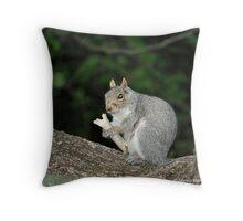 Successful Squirrel Throw Pillow